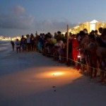 Blog-sea_turtle_release_at_Royal_Resorts_img1